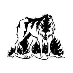 Loup dans la neige