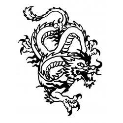 Dragon asiatique