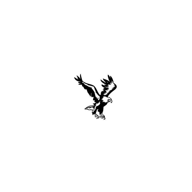 Aigle en chasse