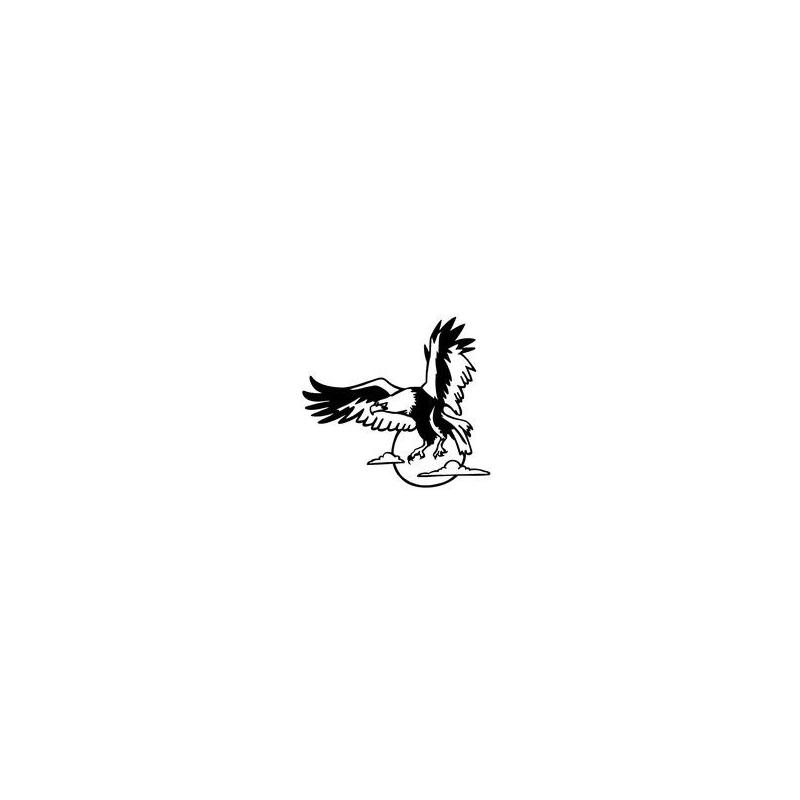 Aigle en vol 2